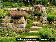 Сухая стенка для растений