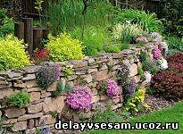 Сухая стенка в саду